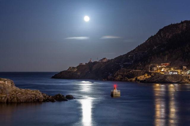 Harbour Moonlight