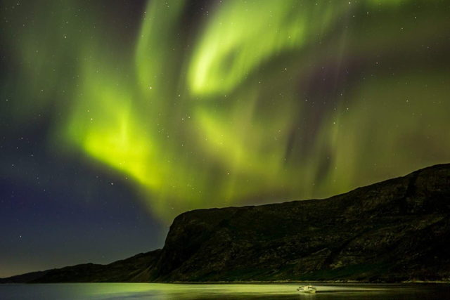 Aurora Of The North - Labrador