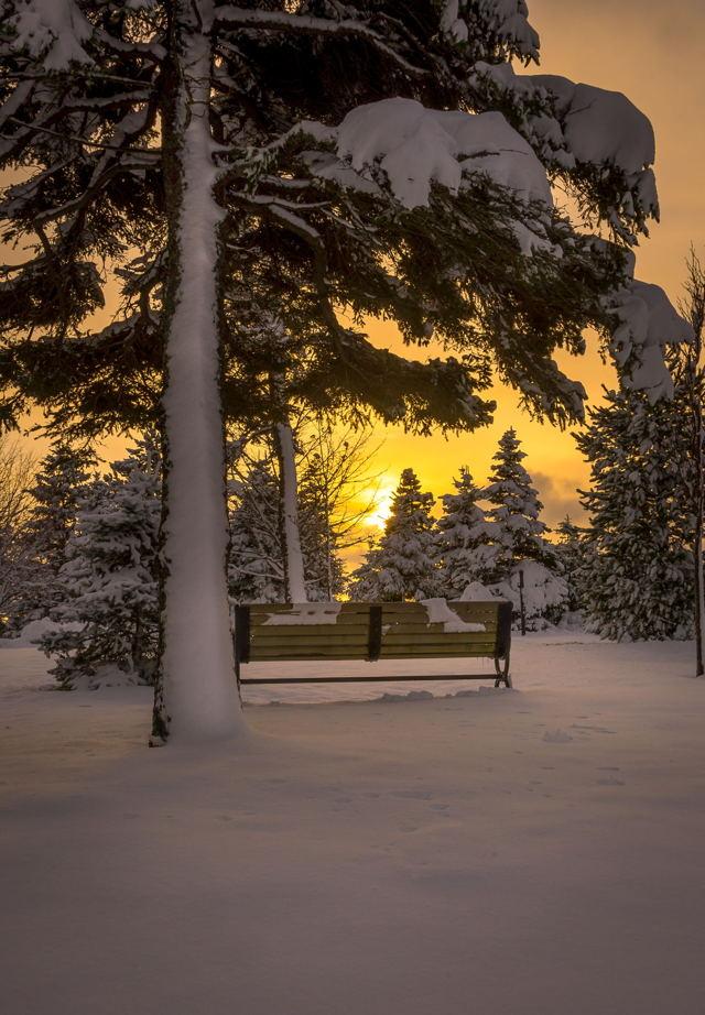 1 ba Bowring Park Sunset