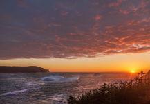 Golden Torbay Sunrise