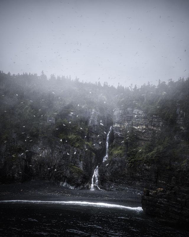 Seagulls and Waterfall