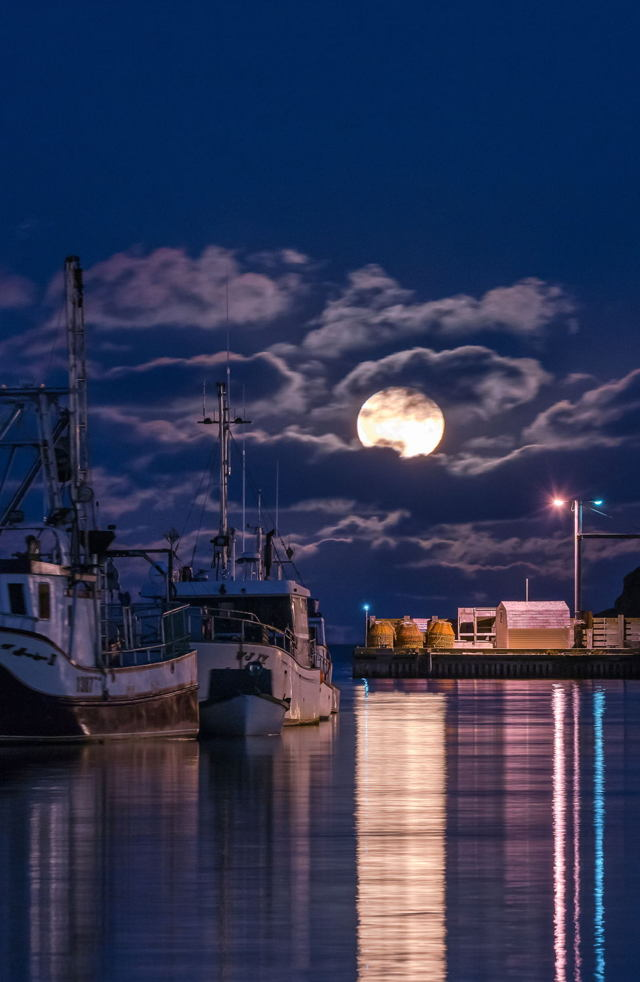 Petty Harbour Harvest Moon