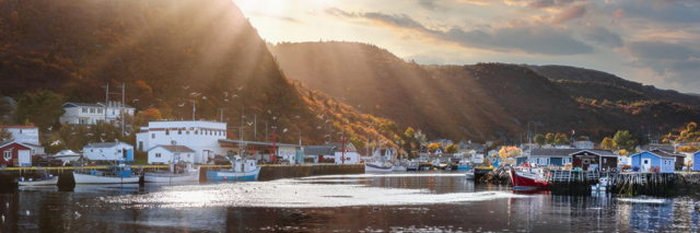 Fall in Petty Harbour