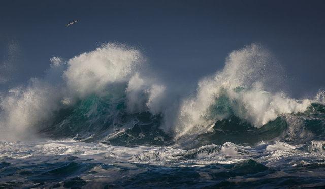 Savage Sea