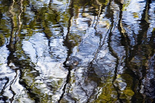 River Stories I