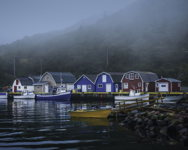 Foggy Morning at Petty Harbour
