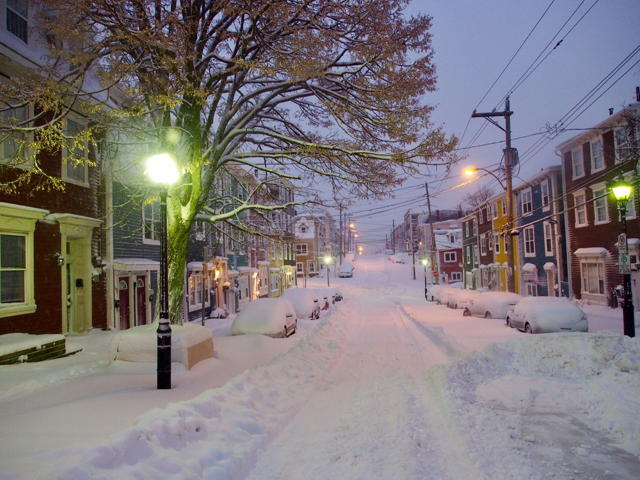 Gower Street in white