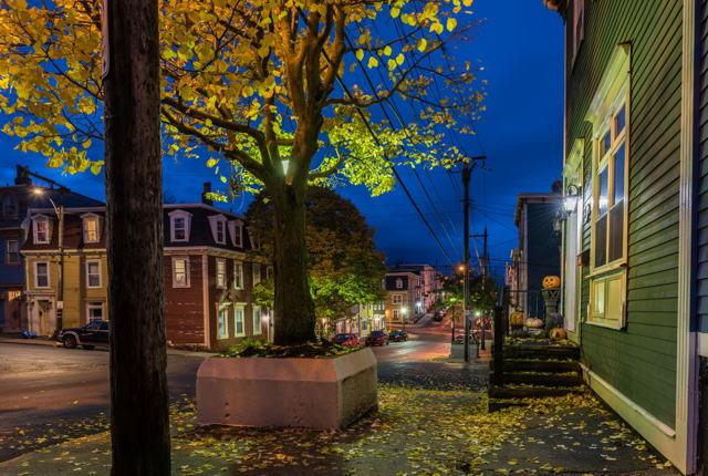 Gower Street Halloween W1