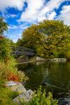 Bowring Park Fall Bridge