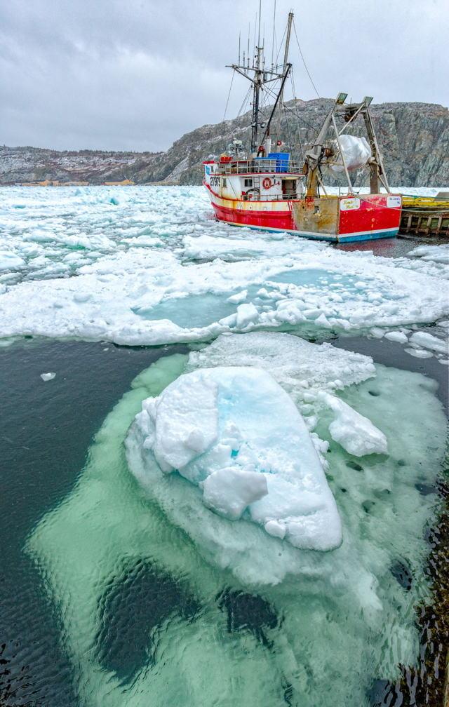 Sea Ice in Cupids