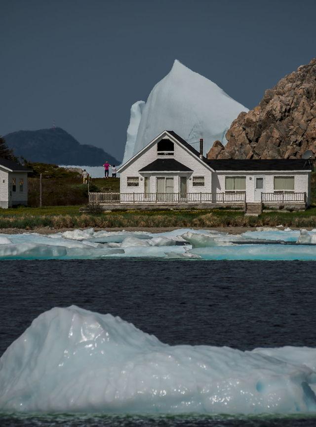 Twillingate Iceberg - Little Harbour