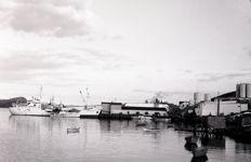Burgeo - Fish Plant - 1960.