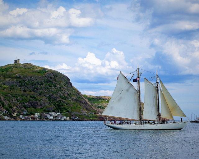 Schooner Bowdoin - St. John's Harbour