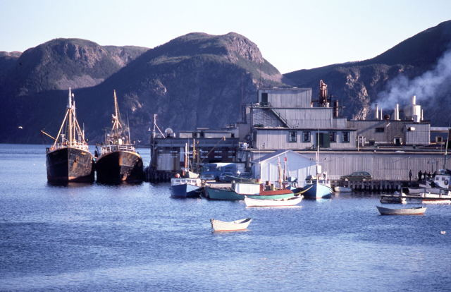 Harbour Breton fish plant and trawlers - 1970s