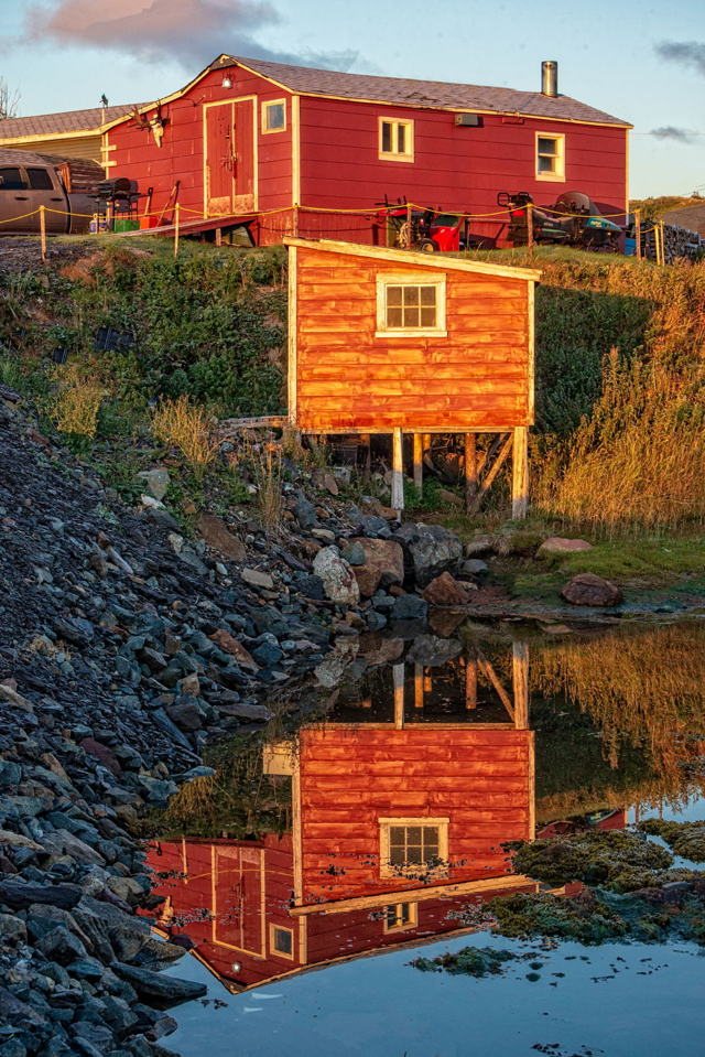 Warm Glow of First Light, Farmer's Arm, Twillingate, Newfoundland