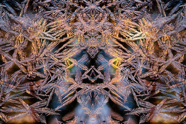 Mystical Realm