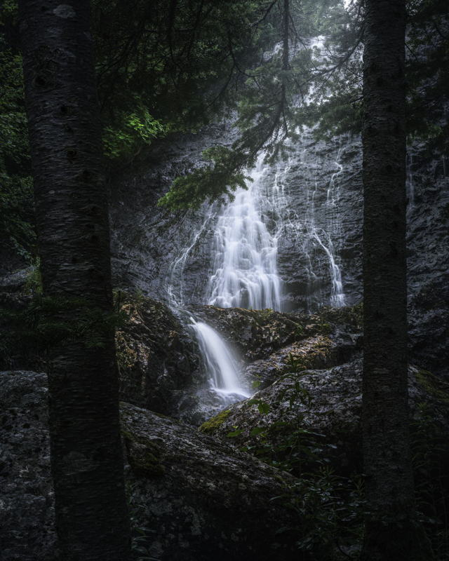 Waterfall through the Trees