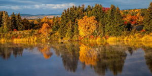 Autumn Glass - Deer Lake