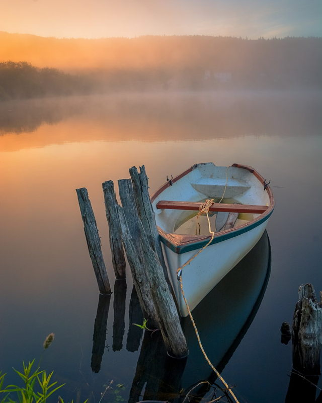 Morning Tranquility