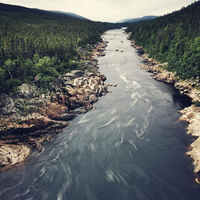 Silky Pinware River