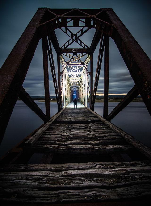 The Gut Bridge