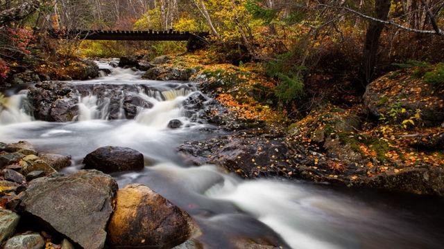 Autumn Stream 2
