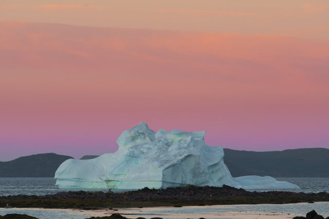 Iceberg at Sunset Twillingate