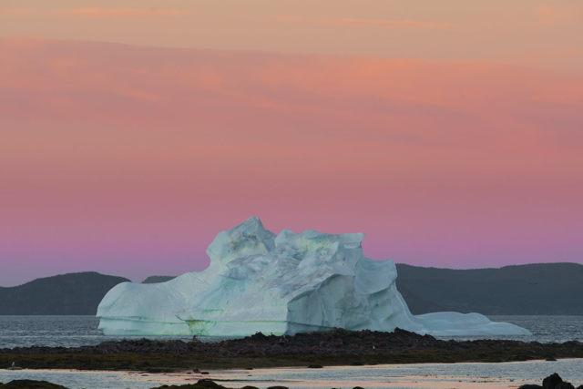Iceberg at Sunset Twillingate