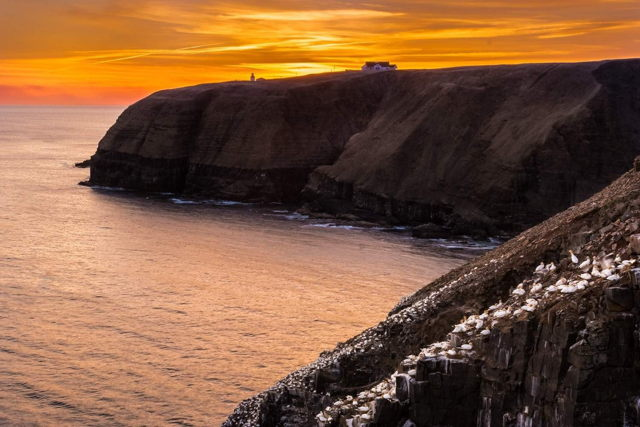 Cape St. Mary's Sunset