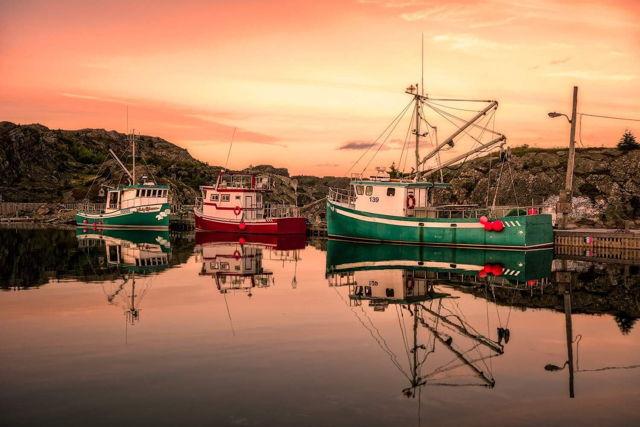 Dawn Boats Brigus