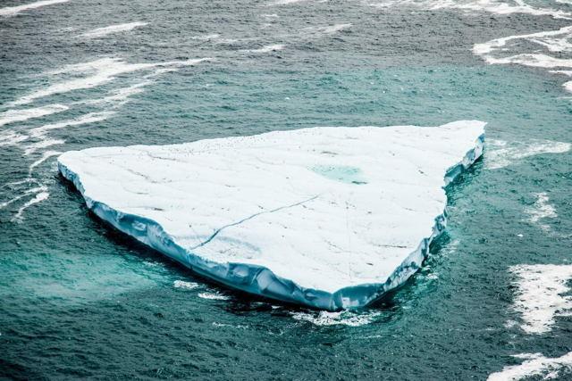 Torbay Iceberg 3683