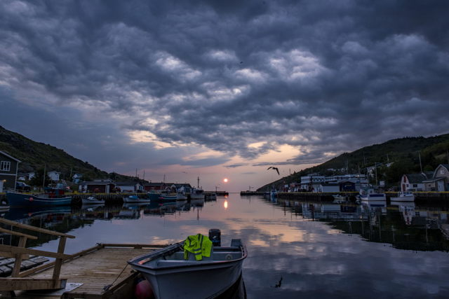 Petty Harbour Drama