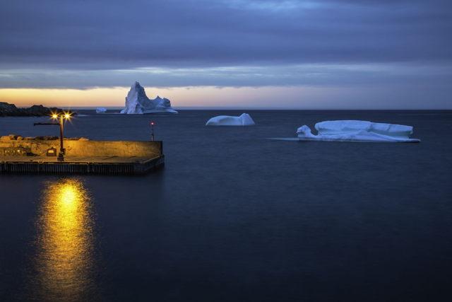 Grates Cove Icebergs