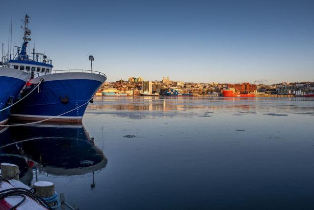 Sun rising on St. John's Harbour