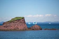 Islington Icebergs