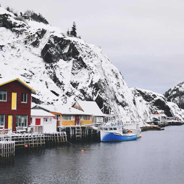 Winter in Quidi Vidi