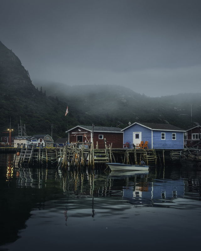 Morning Mist Petty Harbour