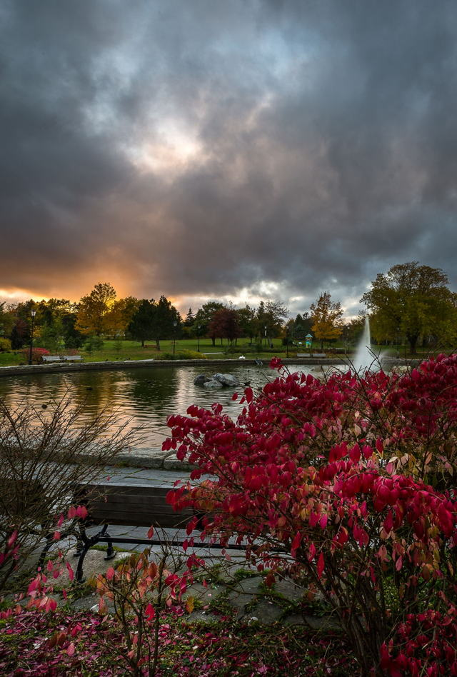 1 ba Bowring Park Fall v91