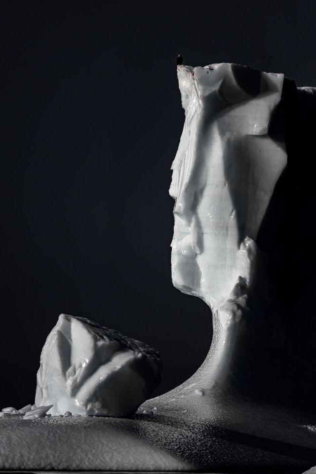 Champney's Arm Iceberg and Eagle
