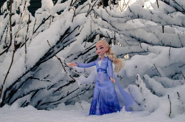 Elsa....Frozen 2