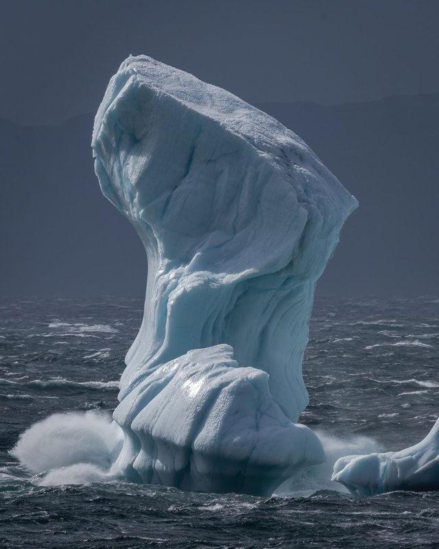 Cavendish IcebergBerg