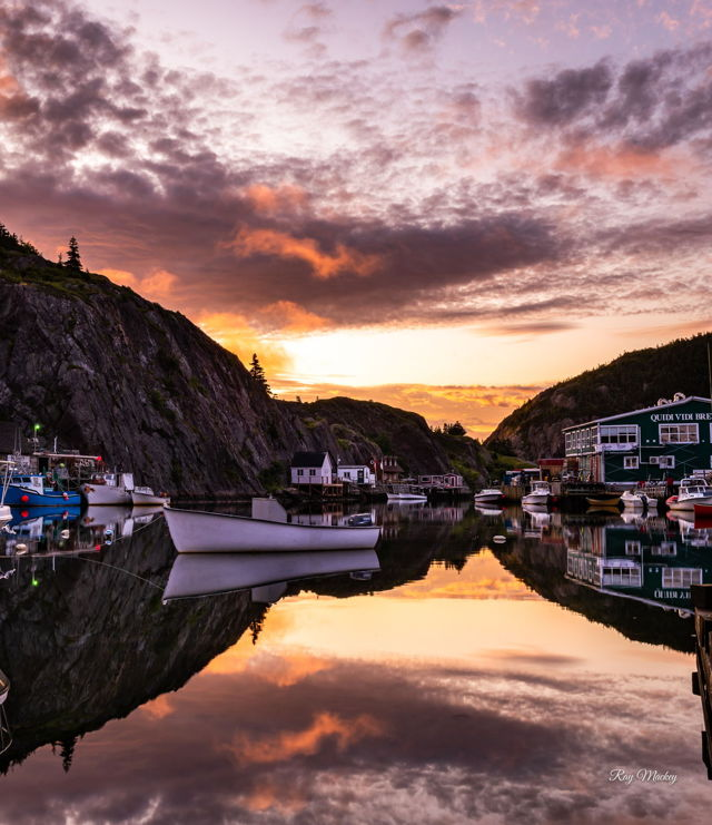 Quidi Vidi Summer Reflection