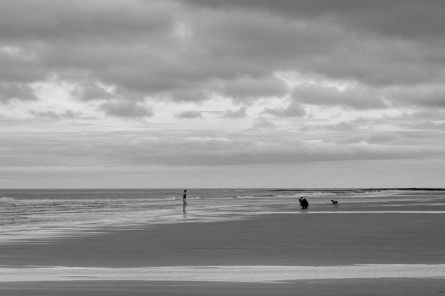 Swimmer of Bamburgh