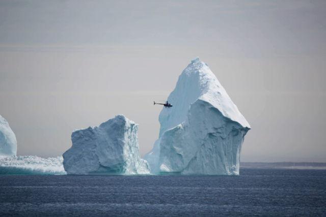 Ferryland Iceberg 1