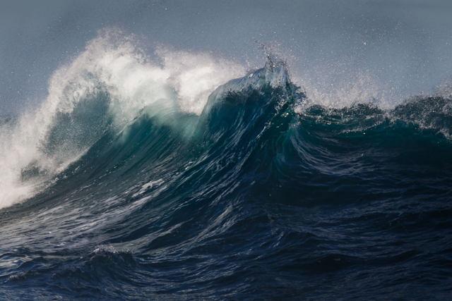 Wave Frenzy