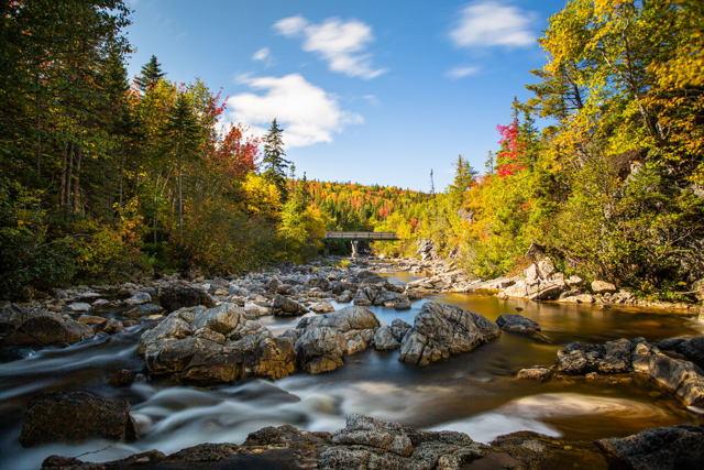 Corner Brook Autumn...