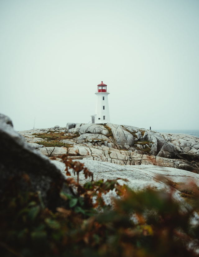 Solidarity at Peggy's Cove