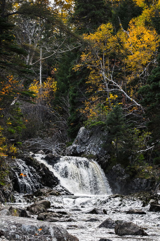 The Falls, Holyrood