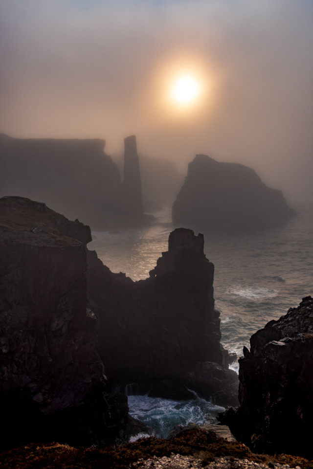 Spillars Cove Fog