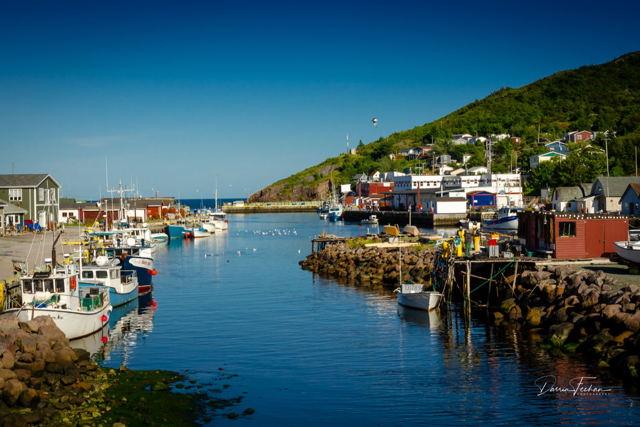 Beautiful Petty Harbour